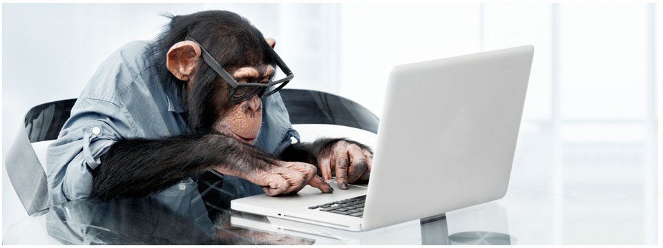 Code Monkey